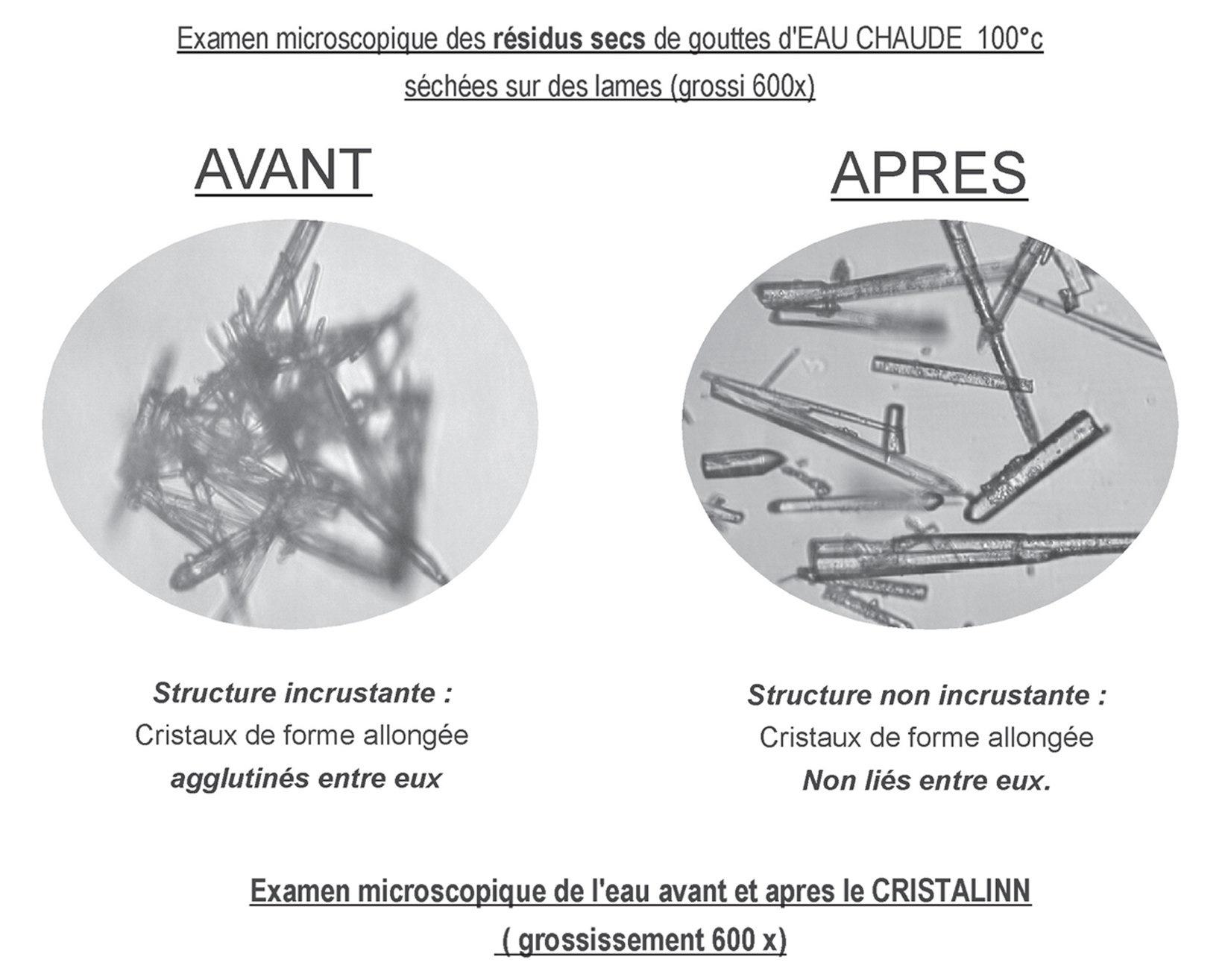 Calcite aragonite